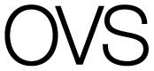 www.ovs.it